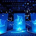 AV & LED Screens